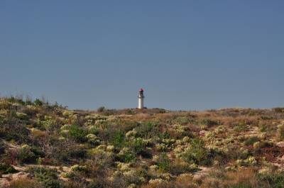 b2ap3_thumbnail_1442-Point-Quobba-Lighthouse.JPG